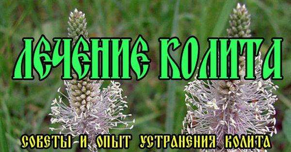 Лечение колита травами