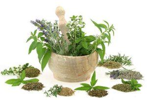 Как приготовить лекарство из трав