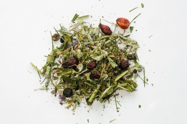 Лекарственные сборы трав против атеросклероза